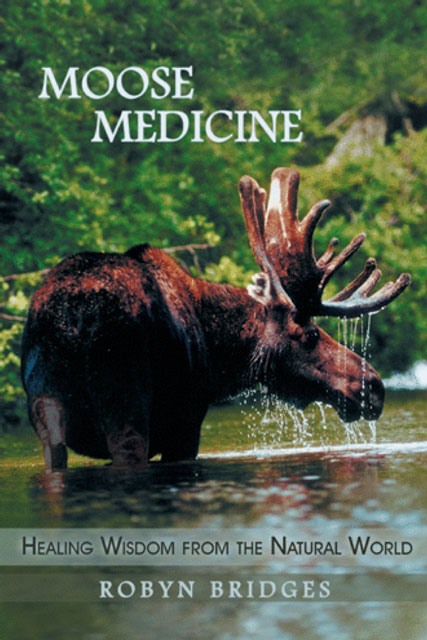 Moose Medicine book by Robyn Bridges