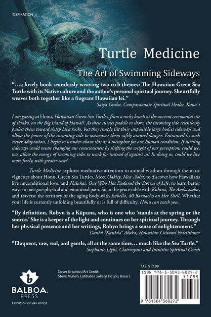 Turtle Medicine book by Robyn Bridges
