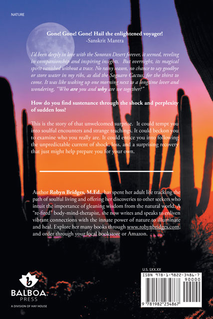 Water For The Desert book by Robyn Bridges